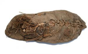 World's Oldest Shoe